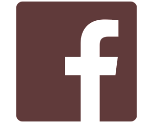 Facebook Franchisingbook